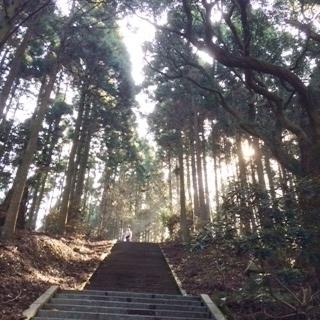 4日熊本御坂遊歩道12.jpg