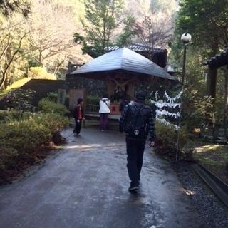 4日熊本御坂遊歩道8.jpg