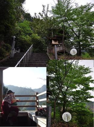 4日熊本御坂遊歩道ぶろぐ2.jpg