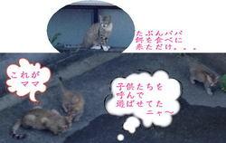 11日ブログ�A.jpg