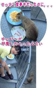 12日ブログ.jpg